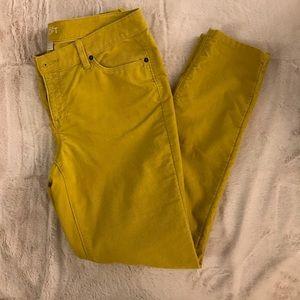 LOFT Modern Corduroy Skinny Pant